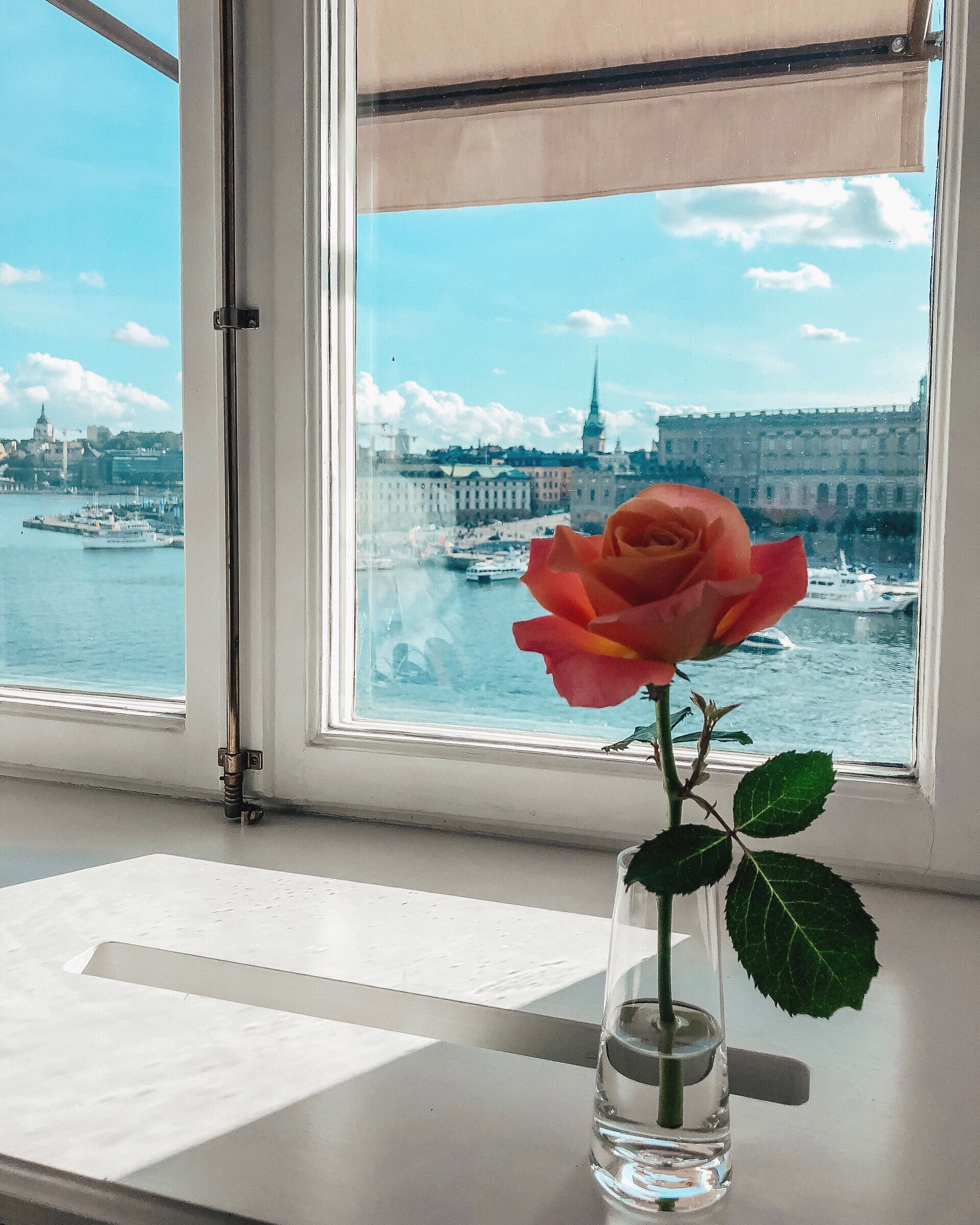 Swedish Reflection